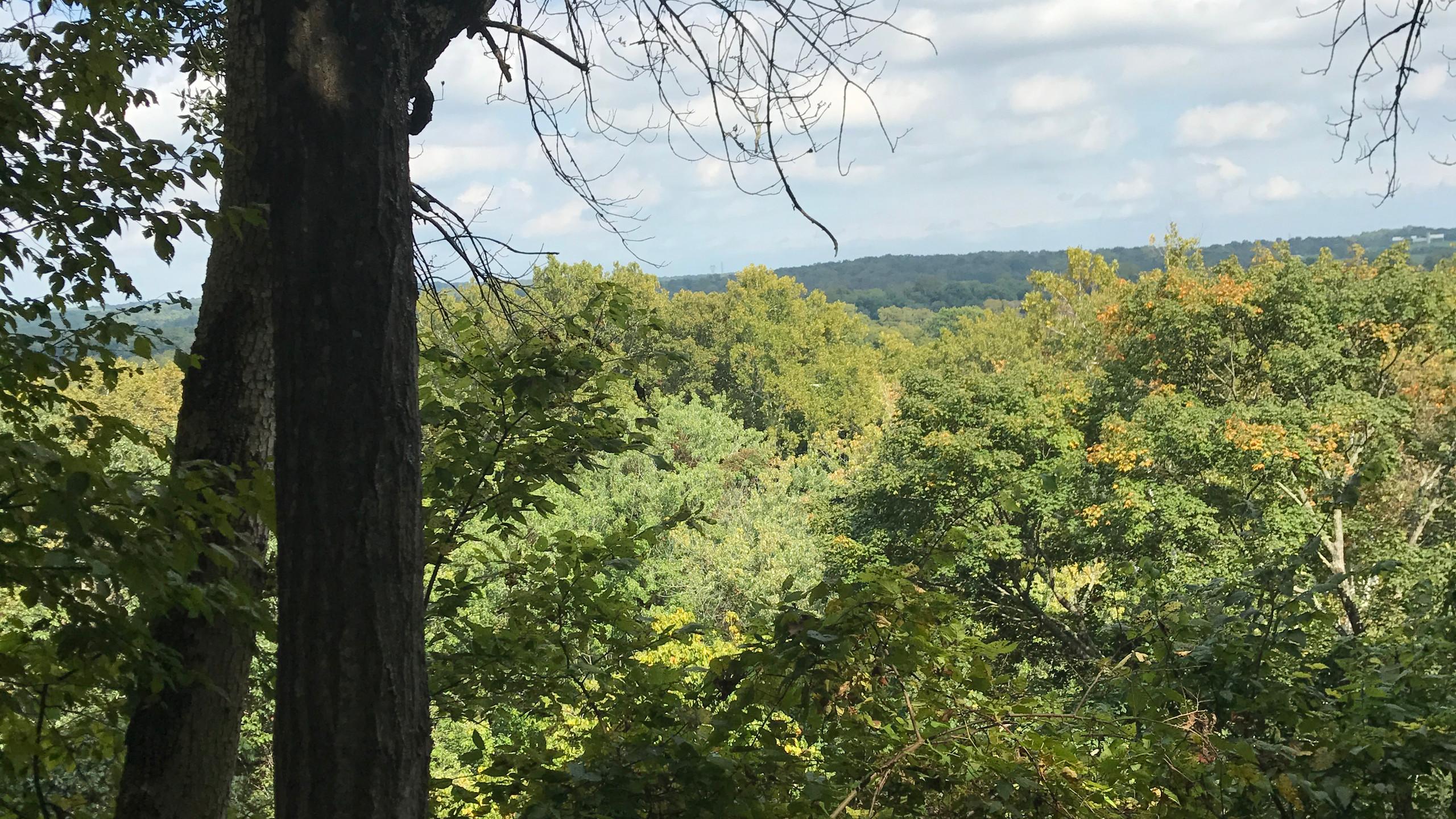 Overlook at Ball's Bluff