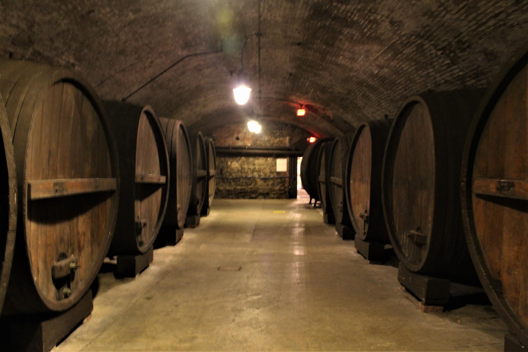 Large Casks in Cellar