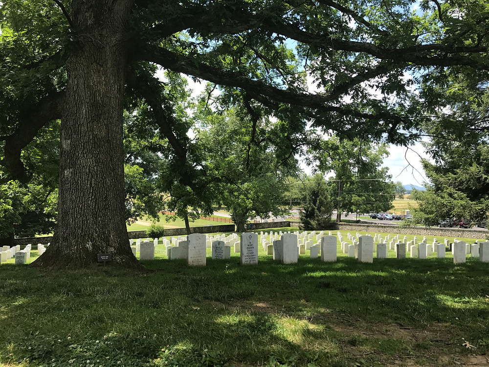 Inside of the National Cemetery