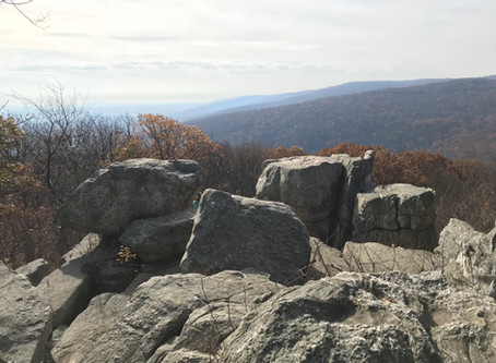 Trail Trials: Catoctin Mountain and Cunningham Falls