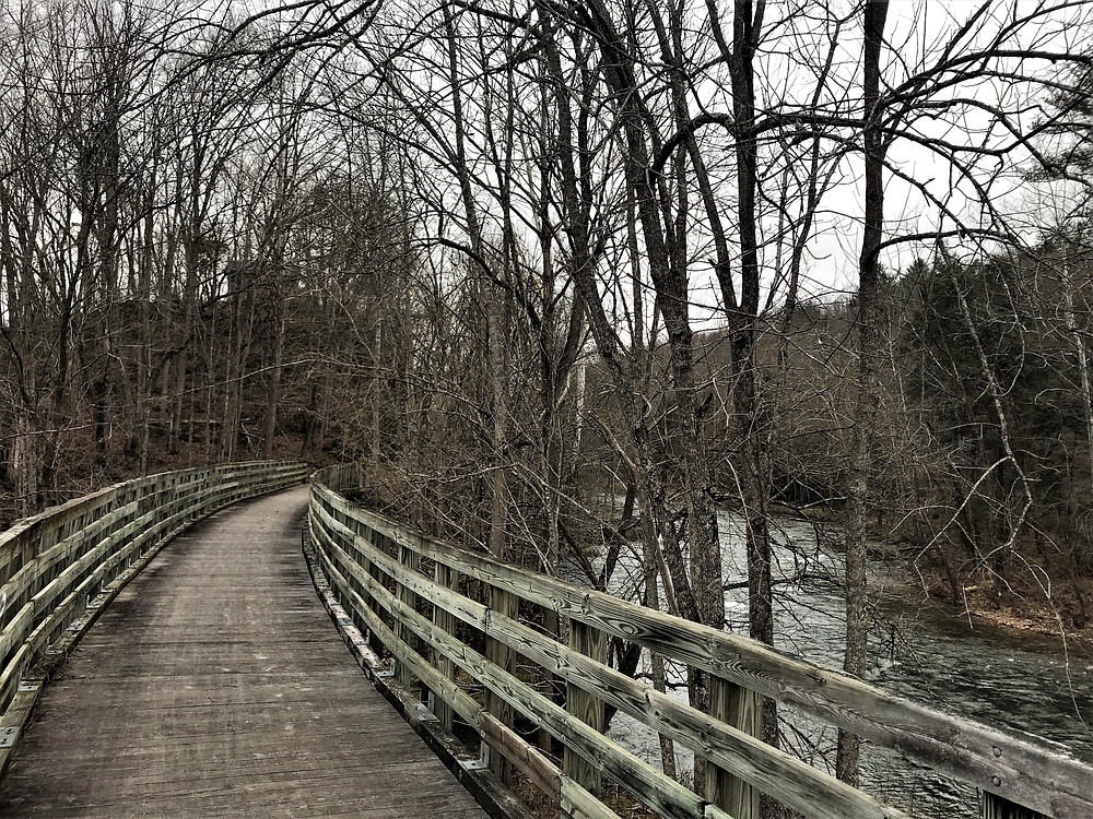 Trestle Bridge Contouring the Holston River
