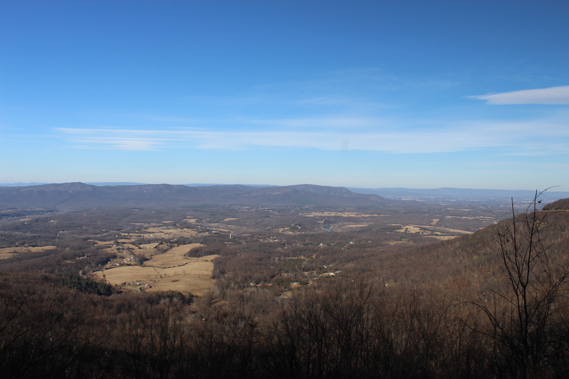 Another View of Signal Knob