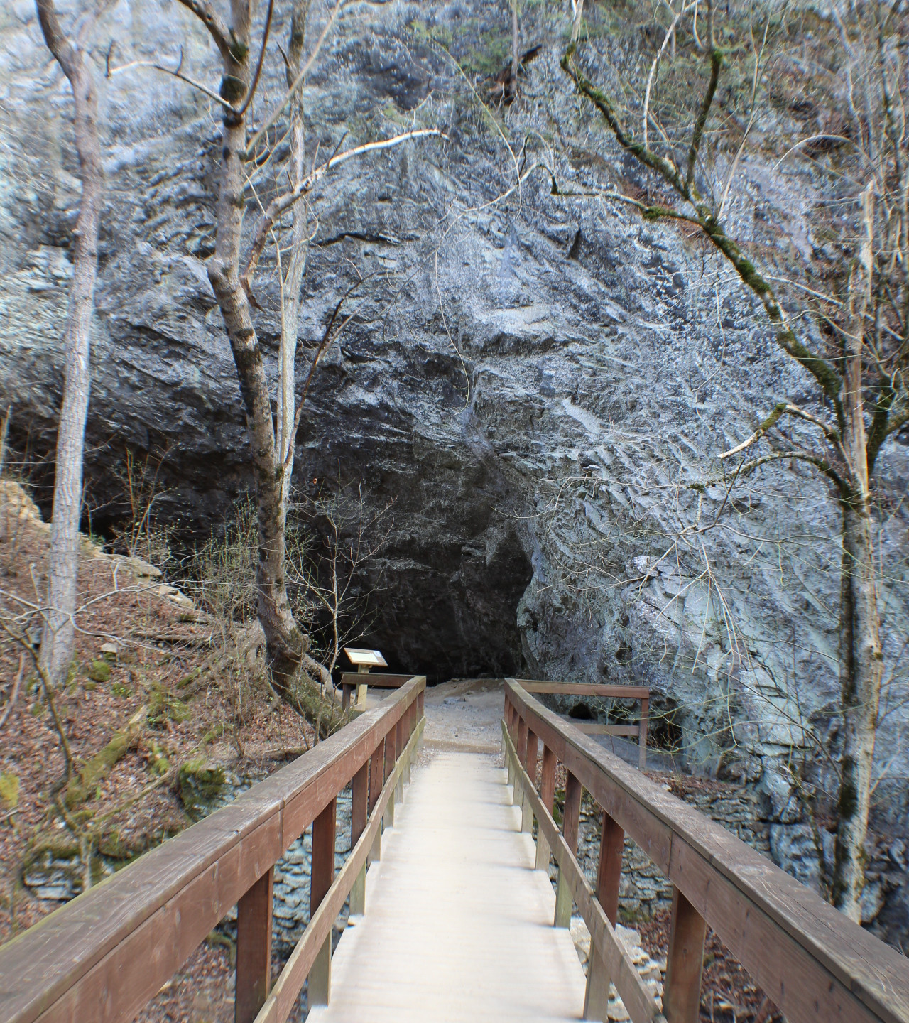 Entrance to Saltpeter Cave