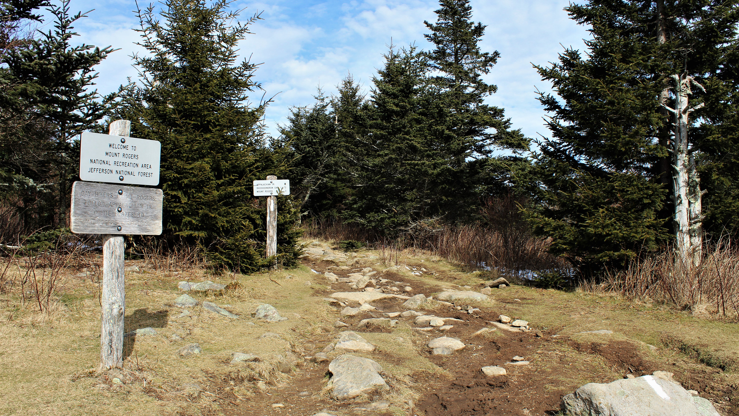 Mount Rogers Trail via AT