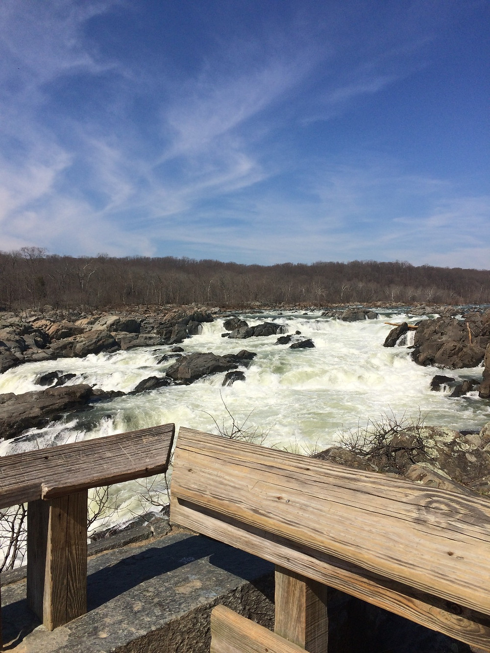 View of Great Falls from the Overlook