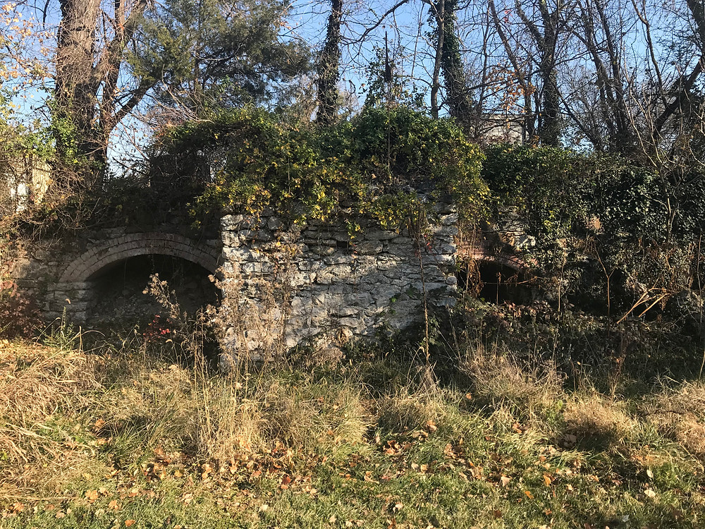 Ruins of the Leesburg Lime Company