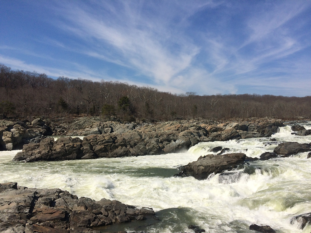 View of the Falls from Olmsted Island