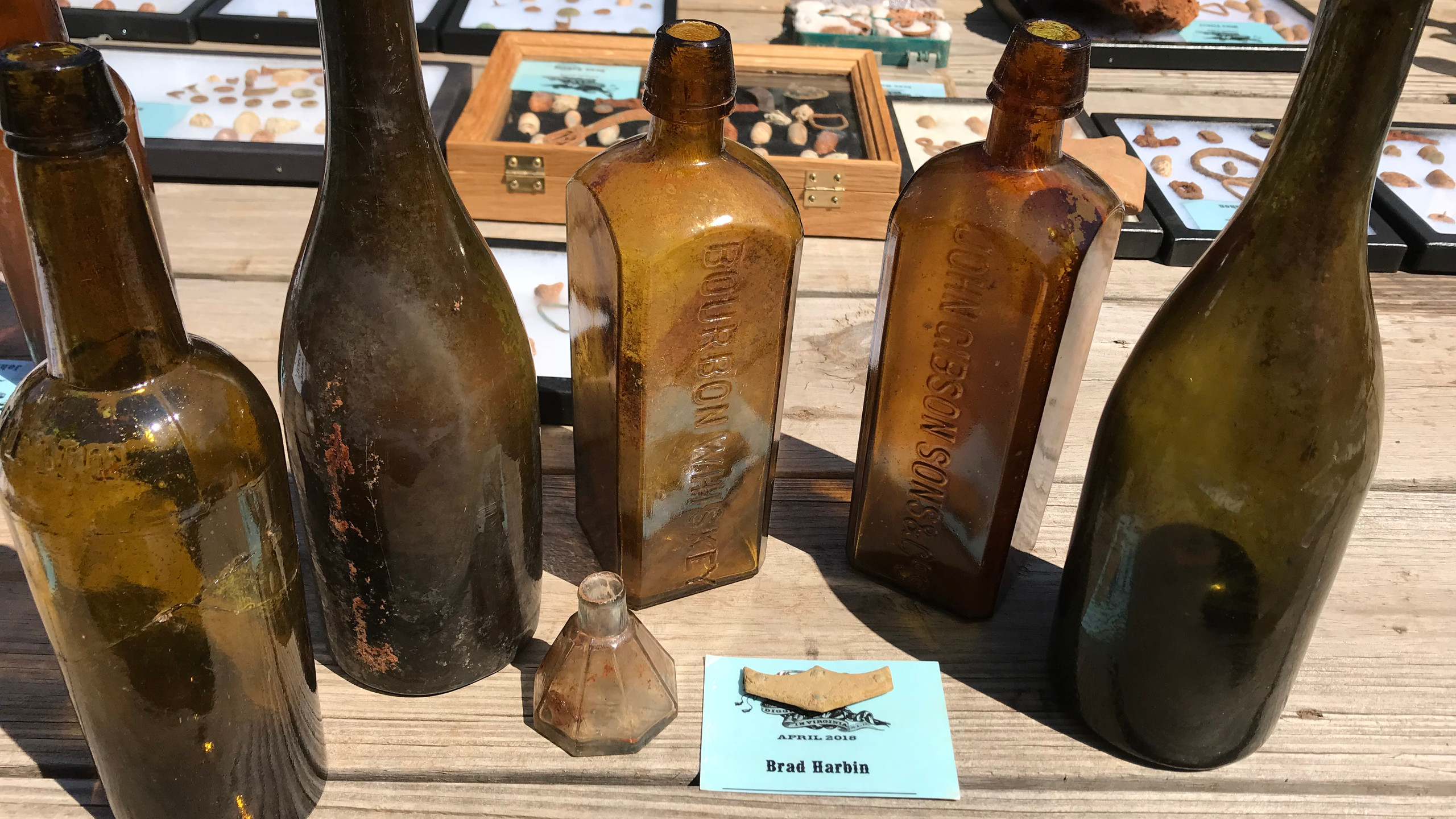 Bottles and a Bat Wing
