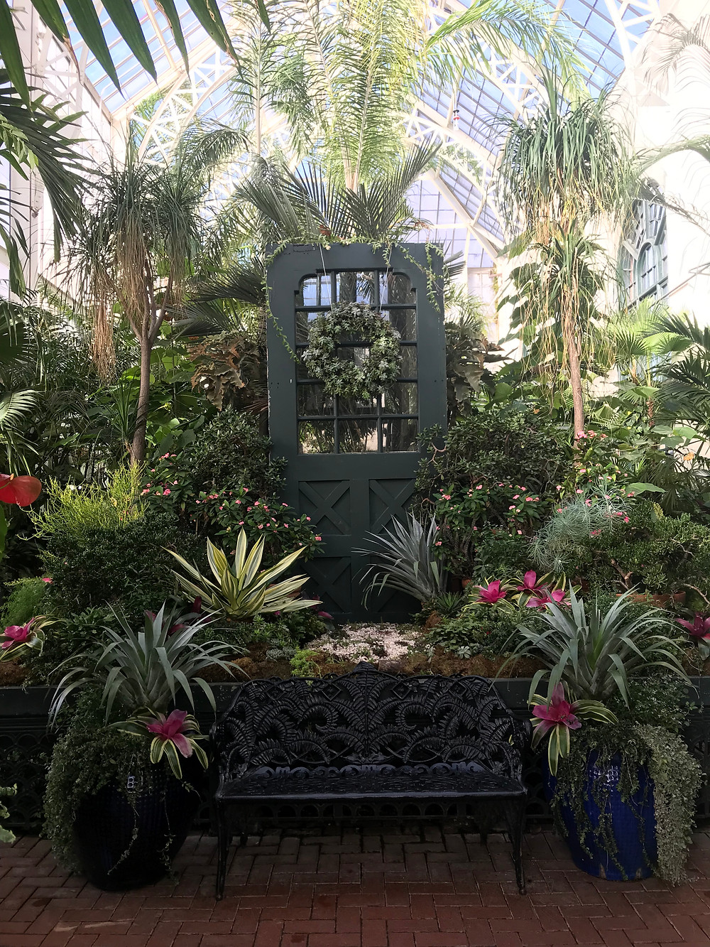 Exotic Plants inside the Conservancy