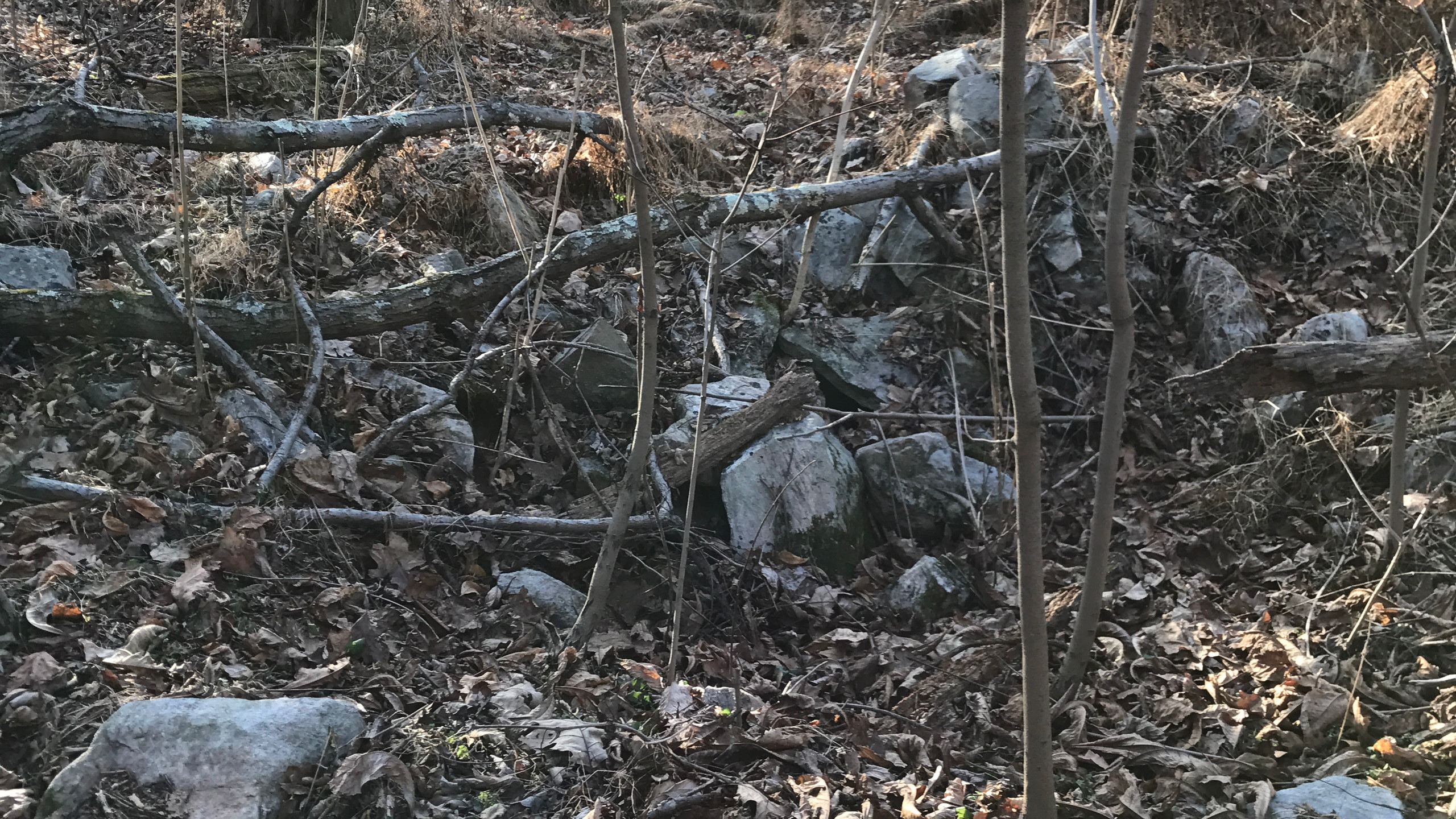Remnants of a chimney