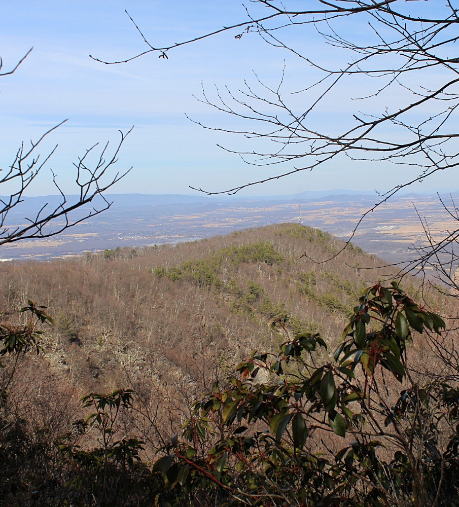 View of Signal Knob from Path