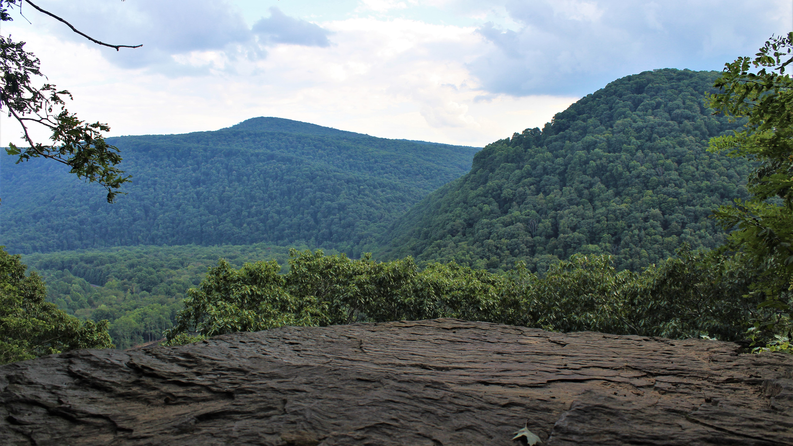 Youghiogheny Gorge Overlook