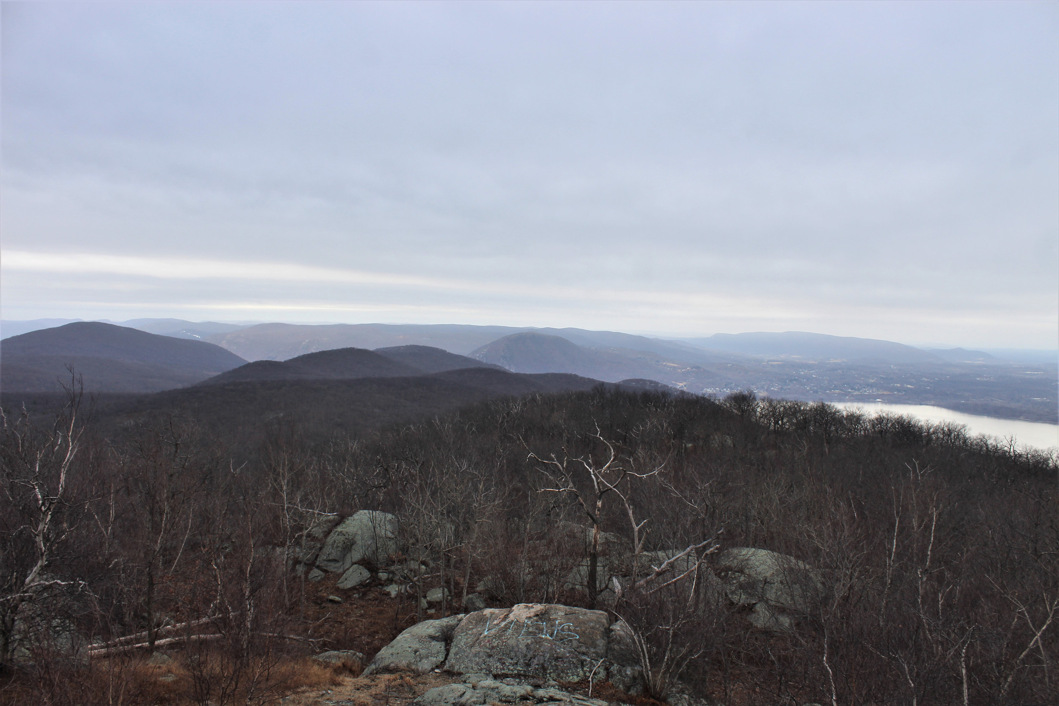 Southwest View from Fire Tower