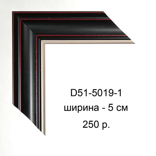 D51-5019-1.jpg