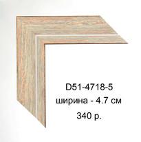 D51-4718-5.jpg