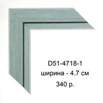 D51-4718-1.jpg