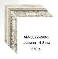 AM-5022-248-2.jpg