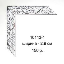 10113-1.jpg