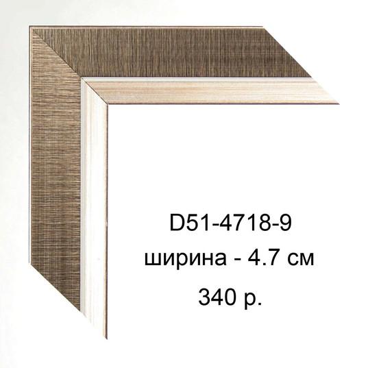 D51-4718-9.jpg