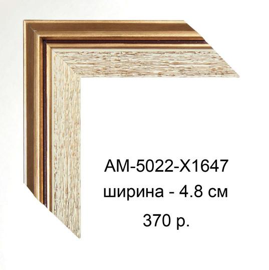 AM-5022-X1647.jpg