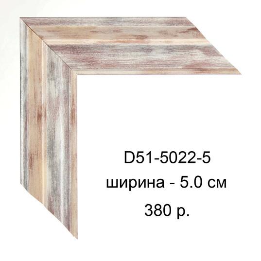 D51-5022-5.jpg
