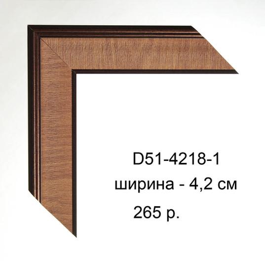 D51-4218-1 копия.JPG
