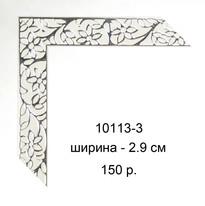 10113-3.jpg