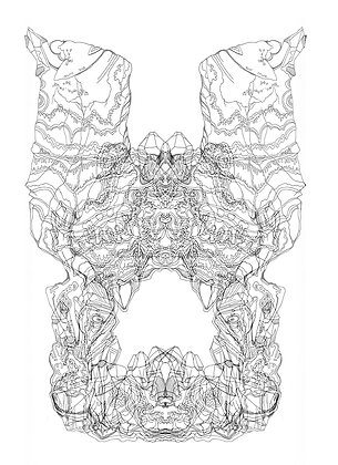 Rorschach Formation V4; Coloring Poster