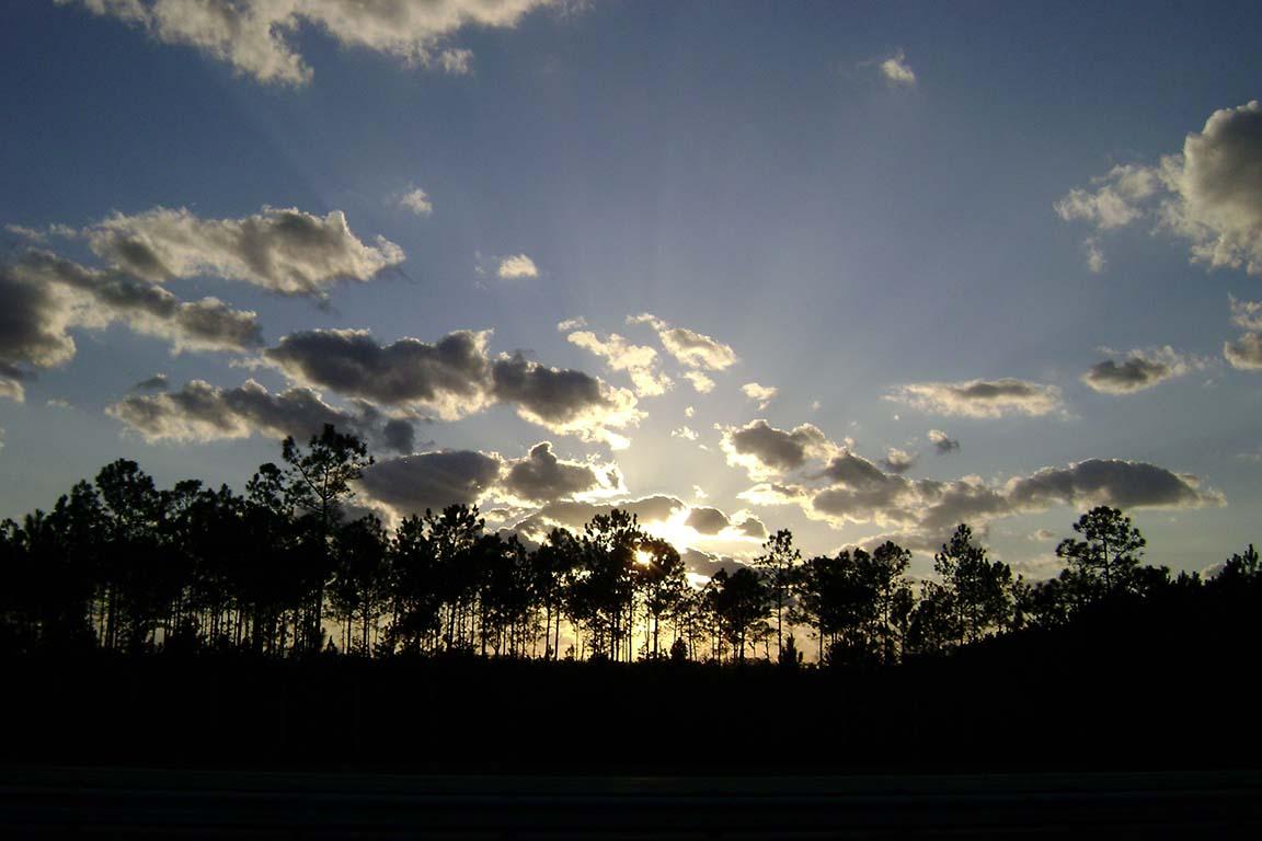 Florida Sunset '10