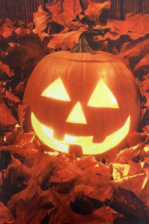 Jack o Lantern Pumpkin Halloween Pumpkin