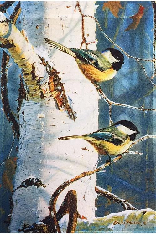 Birds & Birched