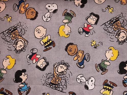 Charlie Brown on Grey