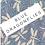 Thumbnail: BLUE DRAGONFLIES