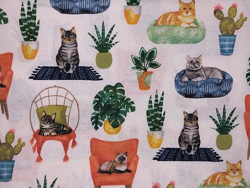 Lounge Cats
