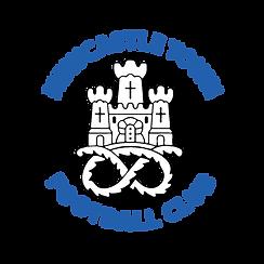 Newcastle Town Football Club, non league football club with a paid academy scholarship programme.