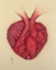 Réseau... sanguin (B.Lacy).jpg