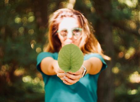 ODS da ONU: Como gerar uma consciência ambiental em meu estabelecimento?