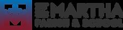 stm-logo-landscape-grad-outline.png