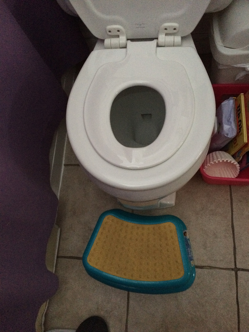 Built in potty seat