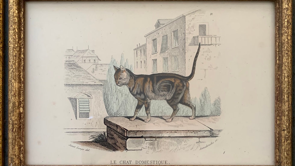 Pair of Cat lithographs