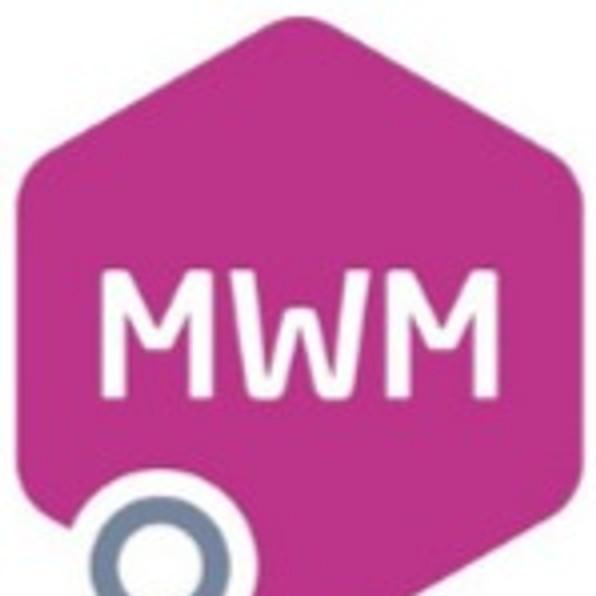 Million Women Mentors Program Launch - Turkey
