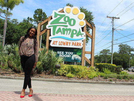 Big Things Are Coming To The Zoo