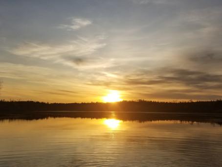 WMASS FISHING REPORT: 11/12/2020