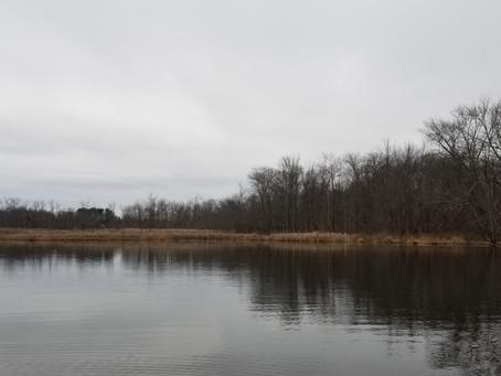 WMASS FISHING REPORT: 11/26/2020