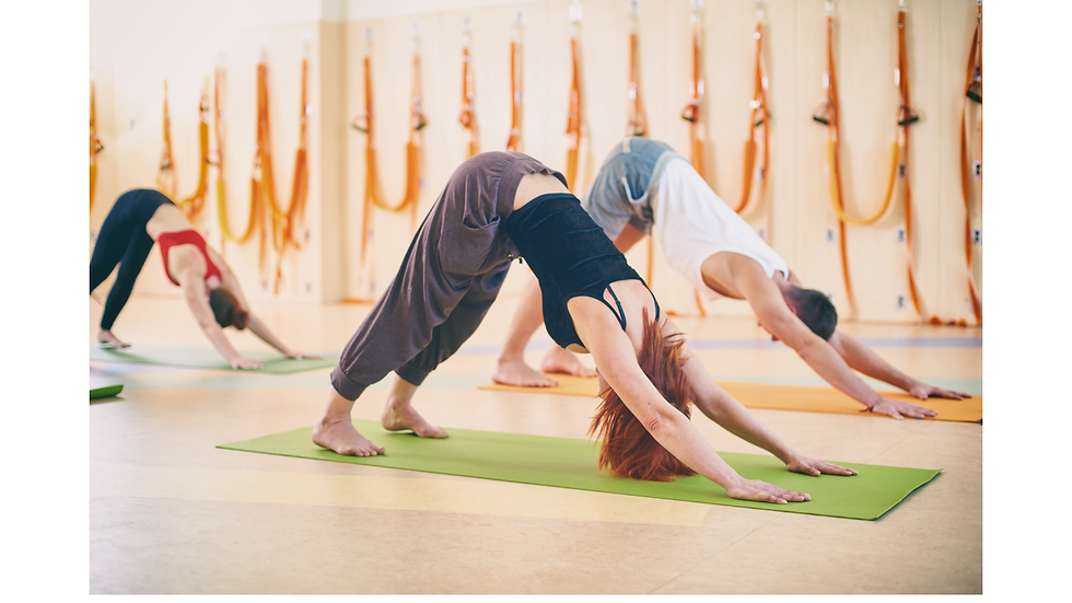 Find Your Zen (Charlotte) with Private Yoga (for up to 10)