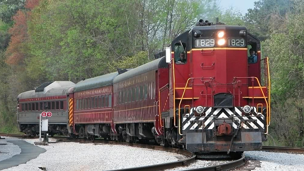 Railroad Train Ride - COMING SOON!