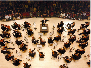 Innovation Ecosystems vs Strategic Innovation Alliances: Sounds of Nature vs. Sounds of Symphony