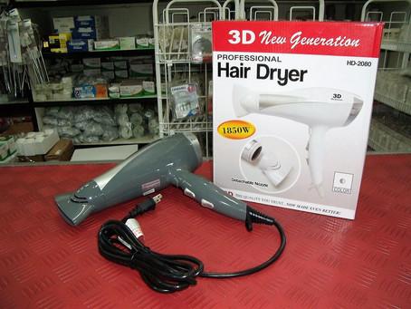3D Standard Hair Dryer