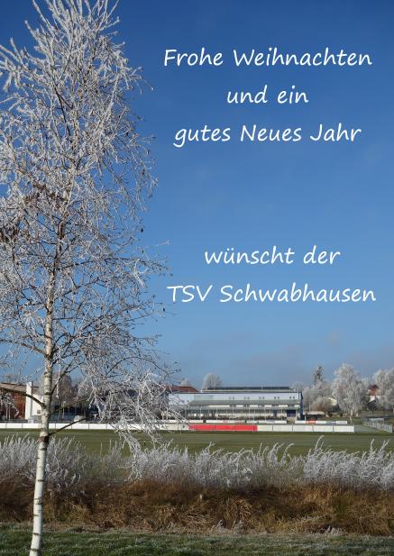 Der TSV wünscht Euch frohe Weihnachten und ein gutes Neues Jahr!