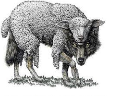wolf in sheep clothing faithful marriage blended family ironman